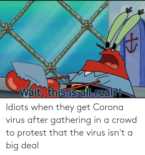 gathering: Idiots when they get Corona virus after gathering in a crowd to protest that the virus isn't a big deal