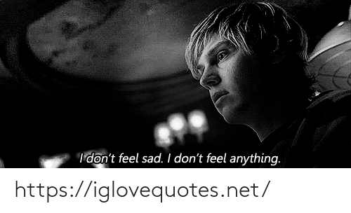 Idont: I'don't feel sad. I don't feel anything. https://iglovequotes.net/