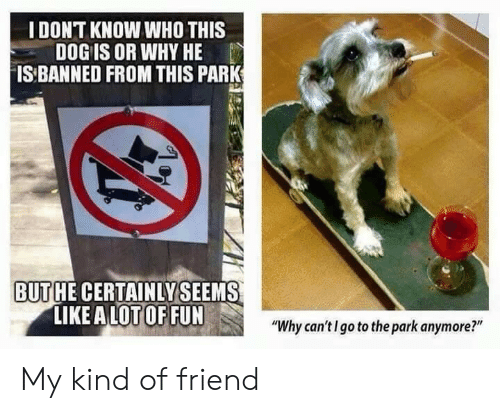 """A Lot Of Fun: IDONT KNOW WHO THIS  DOG IS OR WHY HE  IS BANNED FROM THIS PARK  BUTHE CERTAINLYSEEMS  LIKE A LOT OF FUN  """"Why can'tI go to the park anymore?"""" My kind of friend"""