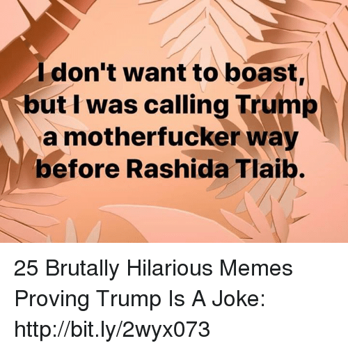 boast: Idon't want to boast,  but I was calling Trump  a motherfucker way  before Rashida Tlaib. 25 Brutally Hilarious Memes Proving Trump Is A Joke: http://bit.ly/2wyx073