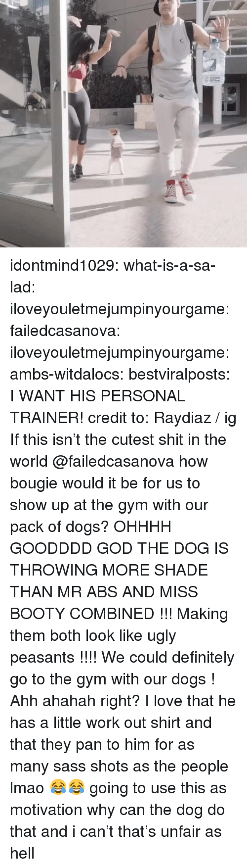 Booty, Definitely, and Dogs: idontmind1029: what-is-a-sa-lad:  iloveyouletmejumpinyourgame:  failedcasanova:  iloveyouletmejumpinyourgame:   ambs-witdalocs:   bestviralposts:  I WANT HIS PERSONAL TRAINER! credit to: Raydiaz / ig   If this isn't the cutest shit in the world    @failedcasanova how bougie would it be for us to show up at the gym with our pack of dogs?    OHHHH GOODDDD GOD THE DOG IS THROWING MORE SHADE THAN MR ABS AND MISS BOOTY COMBINED !!! Making them both look like ugly peasants !!!! We could definitely go to the gym with our dogs !   Ahh ahahah right? I love that he has a little work out shirt and that they pan to him for as many sass shots as the people lmao 😂😂  going to use this as motivation   why can the dog do that and i can't that's unfair as hell