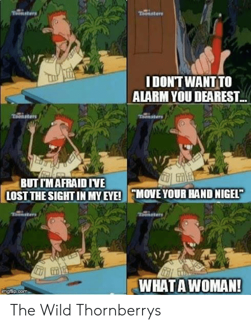 Lost, Alarm, and Wild: IDONTWANT TO  ALARM YOU DEAREST  BUT TMAFRAID IVE  LOST THE SIGHT IN MY EYE! MOVE YOUR HAND NIGEL  WHATAWOMAN!  molip.com The Wild Thornberrys