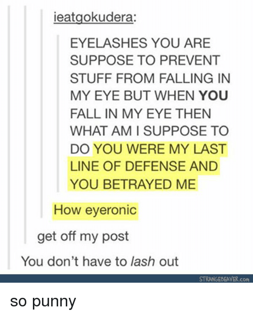Punnies: ieatgokudera:  EYELASHES YOU ARE  SUPPOSE TO PREVENT  STUFF FROM FALLING IN  MY EYE BUT WHEN YOU  FALL IN MY EYE THEN  WHAT AM SUPPOSE TO  DO YOU WERE MY LAST  LINE OF DEFENSE AND  YOU BETRAYED ME  How eyeronic  get off my post  You don't have to lash out  STRANGEDEAVER.com so punny