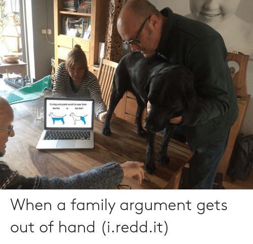 gets-out-of-hand: If a dog wore pants would he wear them  like this  or  ike this? When a family argument gets out of hand (i.redd.it)