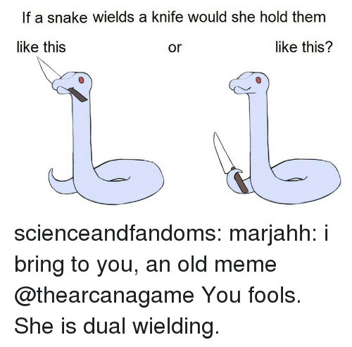 Meme, Tumblr, and Blog: If a snake wields a knife would she hold them  like this  like this?  or scienceandfandoms: marjahh:  i bring to you, an old meme @thearcanagame  You fools. She is dual wielding.