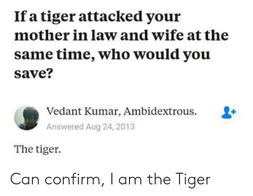 In Law: If a tiger attacked your  mother in law and wife at the  same time, who would you  save?  Vedant Kumar, Ambidextrous.  Answered Aug 24, 2013  The tiger Can confirm, I am the Tiger