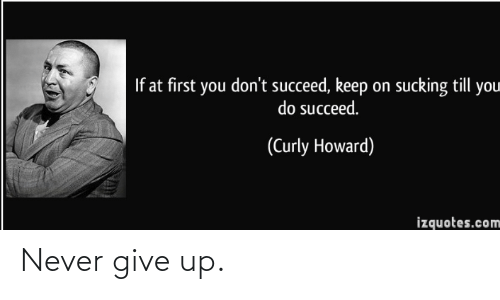 never give up: If at first you don't succeed, keep on sucking till you  do succeed.  (Curly Howard)  izquotes.com Never give up.