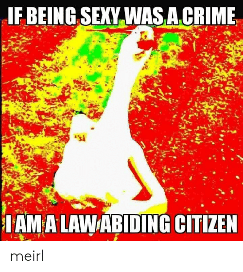 Crime, Sexy, and MeIRL: IF BEING SEXY WASA.CRIME  IAMA LAWABIDING CITIZEN meirl