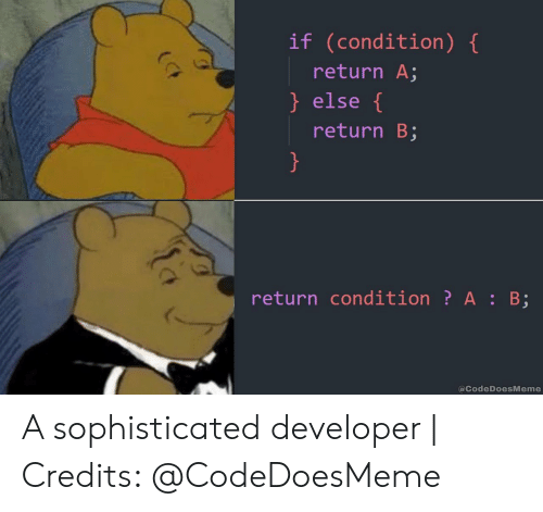 Developer, Sophisticated, and  Else: if (condition) {  return A;  } else {  return B;  }  return condition? A : B;  @CodeDoesMeme A sophisticated developer | Credits: @CodeDoesMeme