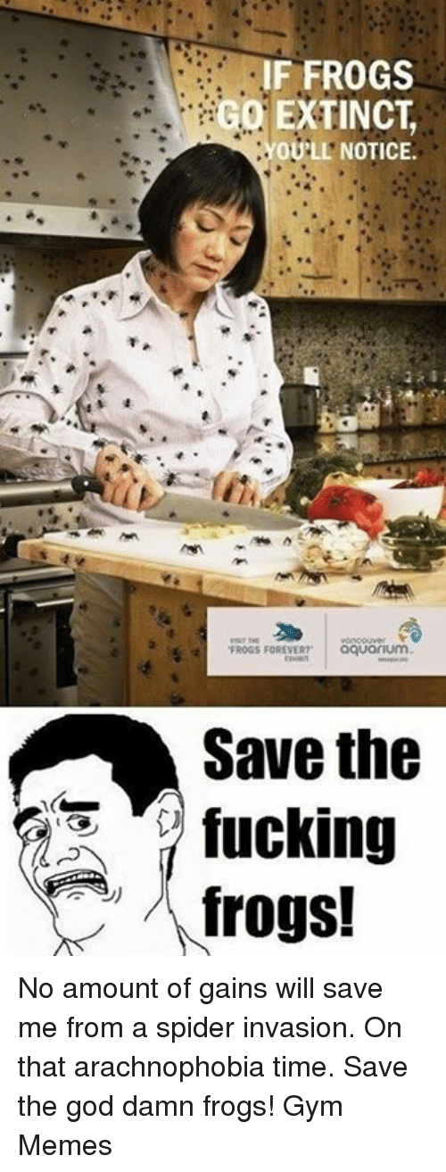 """arachnophobia: IF FROGS  GO EXTINCT  OULL NOTICE.  FROGS FOREVER?""""  aquorum  Save the  fucking  frogs! No amount of gains will save me from a spider invasion. On that arachnophobia time.   Save the god damn frogs!   Gym Memes"""