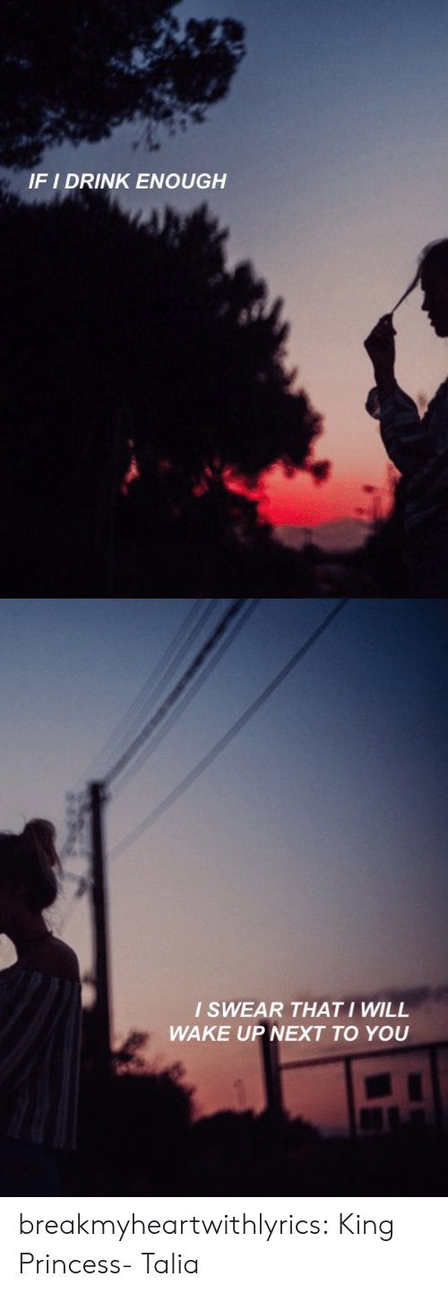 Tumblr, Blog, and Flickr: IF I DRINK ENOUGH   I SWEAR THATI WILL  WAKE UP NEXT TO YOU breakmyheartwithlyrics:  King Princess- Talia