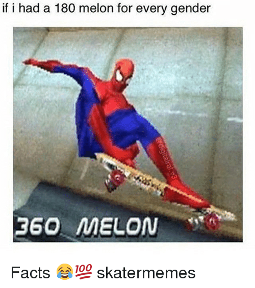 Every Gender: if i had a 180 melon for every gender  360 MELON Facts 😂💯 skatermemes