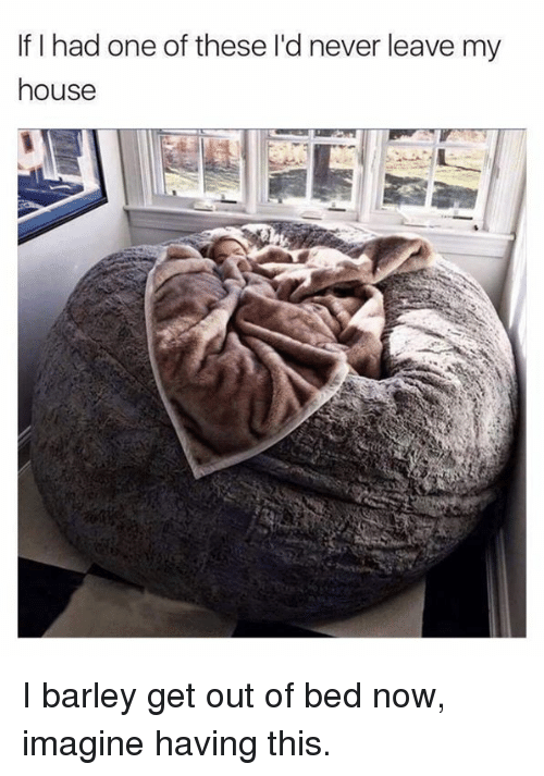 Dank, My House, and House: If I had one of these l'd never leave my  house I barley get out of bed now, imagine having this.
