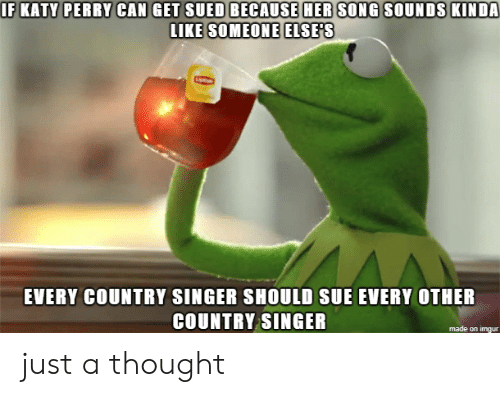 singer: IF KATY PERRY CAN GET SUED BECAUSE HER SONG SOUNDS KINDA  LIKE SOMEONE ELSE'S  EVERY COUNTRY SINGER SHOULD SUE EVERY OTHER  COUNTRY SINGER  made on imgur just a thought