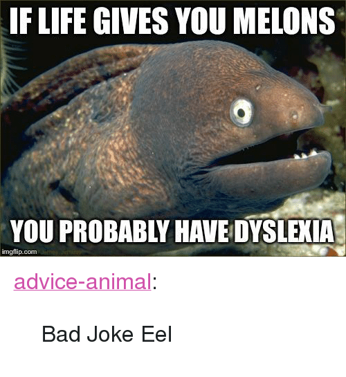 """melons: IF LIFE GIVES YOU MELONS  YOU PROBABLY HAVE DYSLEXIA  imgflip.com <p><a href=""""http://advice-animal.tumblr.com/post/171039751623/bad-joke-eel"""" class=""""tumblr_blog"""">advice-animal</a>:</p>  <blockquote><p>Bad Joke Eel</p></blockquote>"""