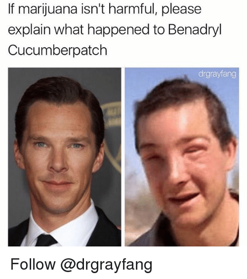 benadryl: If marijuana isn't harmful, please  explain what happened to Benadryl  Cucumberpatch  drgrayfang Follow @drgrayfang