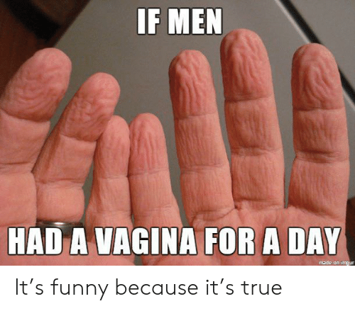 a vagina: IF MEN  HAD A VAGINA FOR A DAY  made on imgur It's funny because it's true