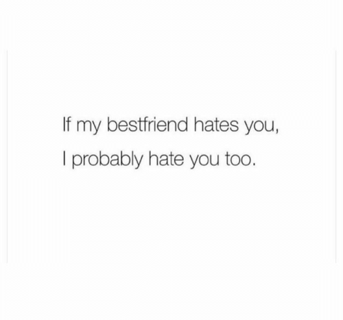 You, Hate, and Probably: If my bestfriend hates you,  I probably hate you too.