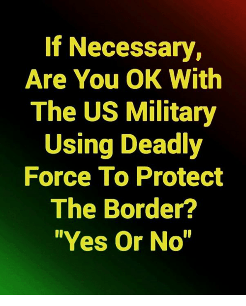 """us military: If Necessary,  Are You OK With  The US Military  Using Deadly  Force To Protect  The Border?  """"Yes Or No"""""""