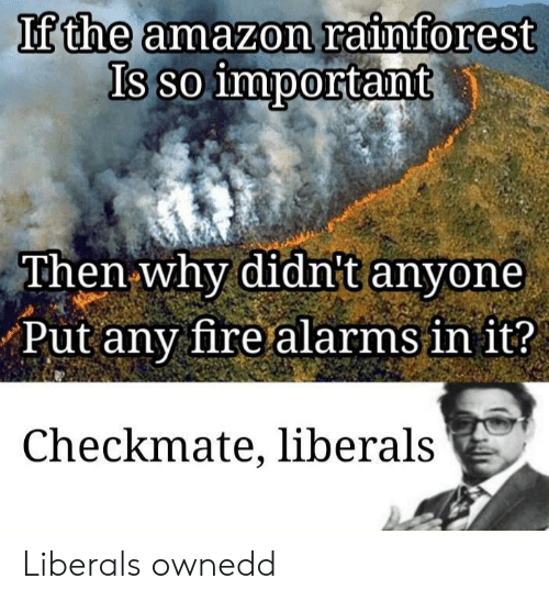checkmate: If the amazon rainforest  Is so important  Then why didnt anyone  Put any fire alarms in it?  Checkmate, liberals Liberals ownedd