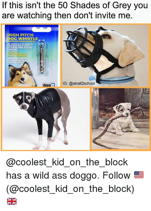 avecs: If this isn't the 50 Shades of Grey you  are watching then don't invite me  NIGH PITCH  OG WHISTLE  VITH ULTRASOUNDS  LE SIFFLET A HAUTTE  REQUENCE AVEC  ULTRASONS POUR  GHIENS  doait  IG: @strait2school @coolest_kid_on_the_block has a wild ass doggo. Follow 🇺🇸(@coolest_kid_on_the_block)🇬🇧