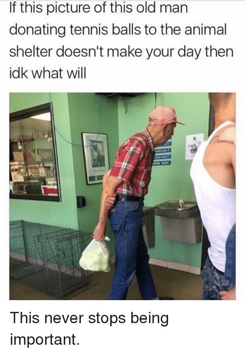 tennis balls: If this picture of this old man  donating tennis balls to the animal  shelter doesn't make your day then  idk what will This never stops being important.