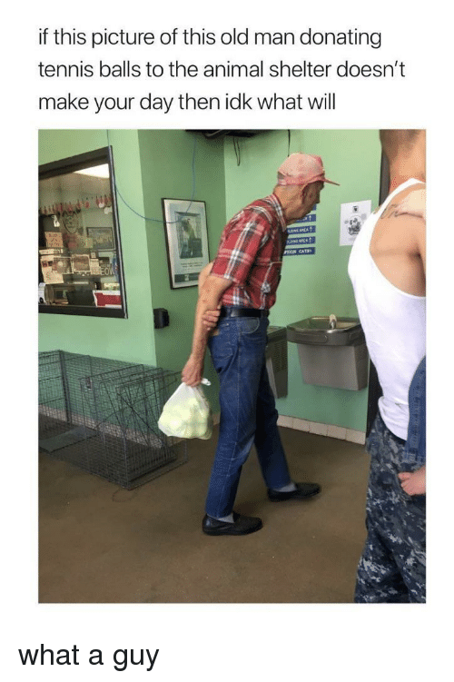 tennis balls: if this picture of this old man donating  tennis balls to the animal shelter doesn't  make your day then idk what will  OW what a guy
