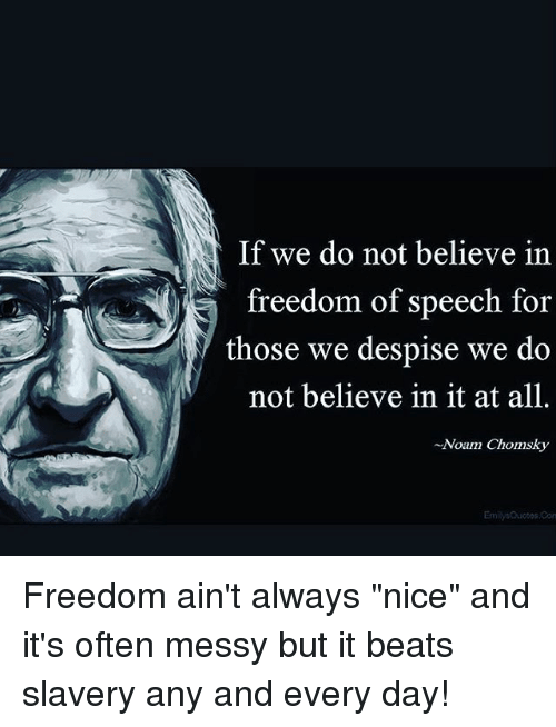 """Conne: If we do not believe in  freedom of speech for  those we despise we do  not believe in it at all.  -Noam Chomsky  Emilys Quotos Conn Freedom ain't always """"nice"""" and it's often messy but it beats slavery any and every day!"""