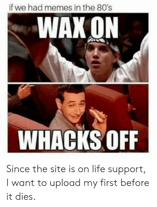 upload: if we had memes in the 80's  WAX ON  WHACKS OFF Since the site is on life support, I want to upload my first before it dies.