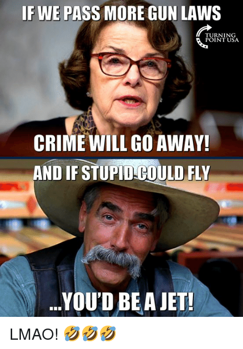 Crime, Lmao, and Memes: IF WE PASS MORE GUN LAWS  TURNING  POINT USA  CRIME WILL GO AWAY!  AND IF STUPID COULD FLY  .YOU'D BEA JET! LMAO! 🤣🤣🤣