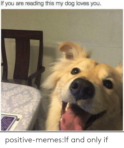 If You Are Reading This: If you are reading this my dog loves you. positive-memes:If and only if