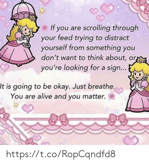 just breathe: If you are scrolling through  your feed trying to distract  yourself from something you  don't want to think about, or  you're looking for a sign...  It is going to be okay. Just breathe.  You are alive and you matter.  @a. https://t.co/RopCqndfd8