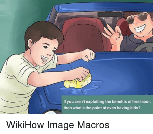Nihilist: If you aren't exploiting the benefits of free labor,  then what's the point of even having kids? WikiHow Image Macros
