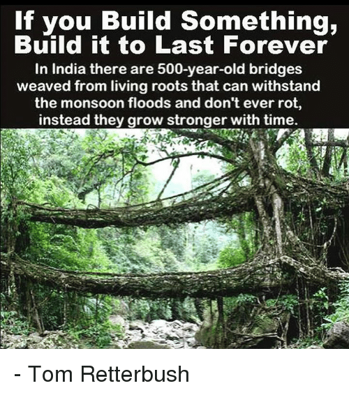 Withstanded: If you Build Something,  Build it to Last Forever  In India there are 500-year-old bridges  weaved from living roots that can withstand  the monsoon floods and don't ever rot,  instead they grow stronger with time. - Tom Retterbush
