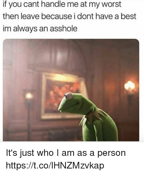 Funny, Best, and Asshole: if you cant handle me at my worst  then leave because i dont have a best  im always an asshole It's just who I am as a person https://t.co/lHNZMzvkap