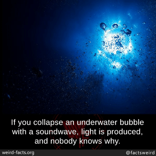 Facts, Memes, and Weird: If you collapse an underwater bubble  with a soundwave, light is produced,  and nobody knows why.  weird-facts.org  @factsweird