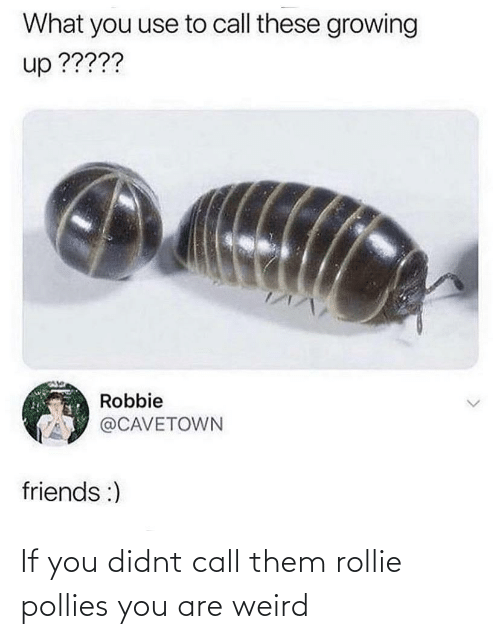 weird: If you didnt call them rollie pollies you are weird