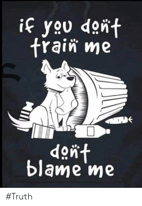 Memes, Truth, and 🤖: if you dont  frain me  dont  blame me #Truth