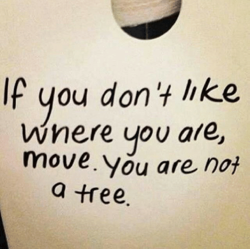 Tree, Move, and You: If  you don't ike  Wnere you are,  move. you are not  a tree.