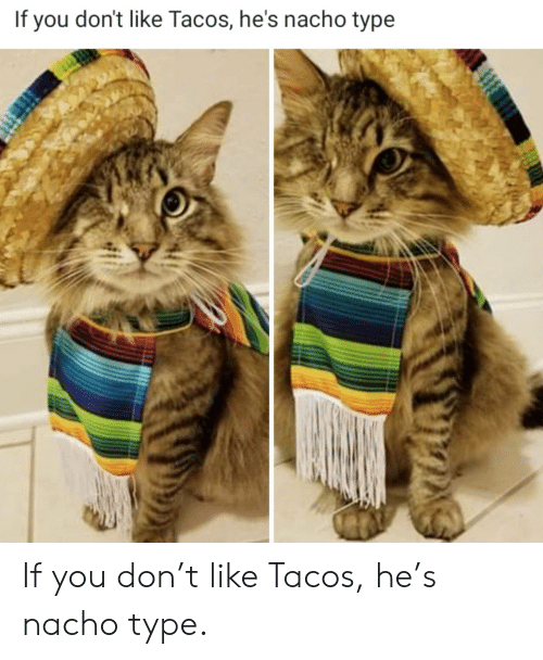tacos: If you don't like Tacos, he's nacho type If you don't like Tacos, he's nacho type.