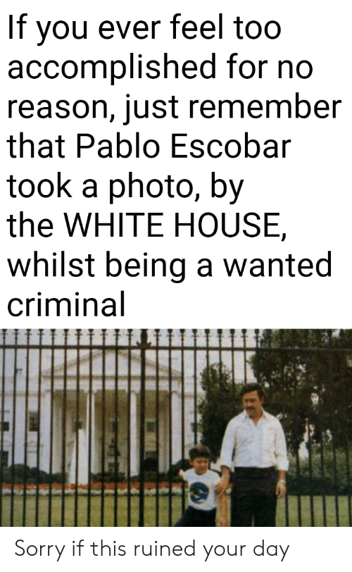 Pablo Escobar, Sorry, and White House: If you ever feel too  accomplished for no  reason, just remember  that Pablo Escobar  took a photo, by  the WHITE HOUSE  whilst being a wanted  criminal Sorry if this ruined your day