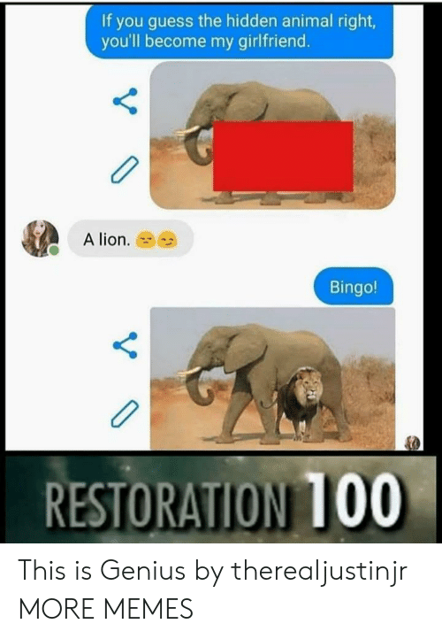 bingo: If you guess the hidden animal right  you'll become my girlfriend.  A lion.  Bingo!  RESTORATION 100 This is Genius by therealjustinjr MORE MEMES