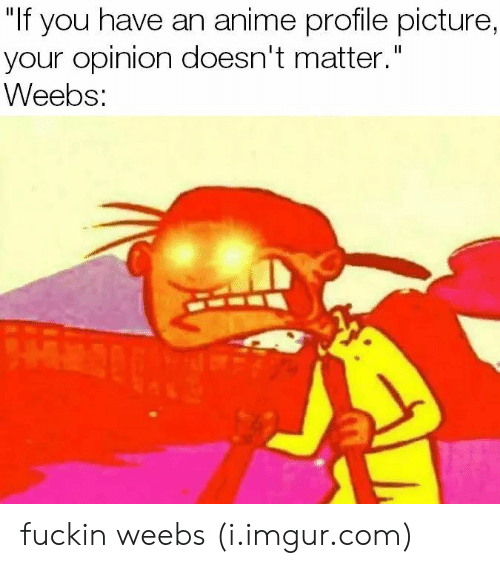 """Anime, Imgur, and Com: """"If you have an anime profile picture,  your opinion doesn't matter.""""  veebS: fuckin weebs (i.imgur.com)"""