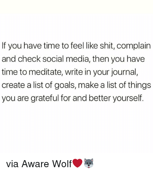 meditate: If you have time to feel like shit, complain  and check social media, then you have  time to meditate, write in your journal,  create a list of goals, make a list of things  you are grateful for and better yourself. via Aware Wolf❤️🐺