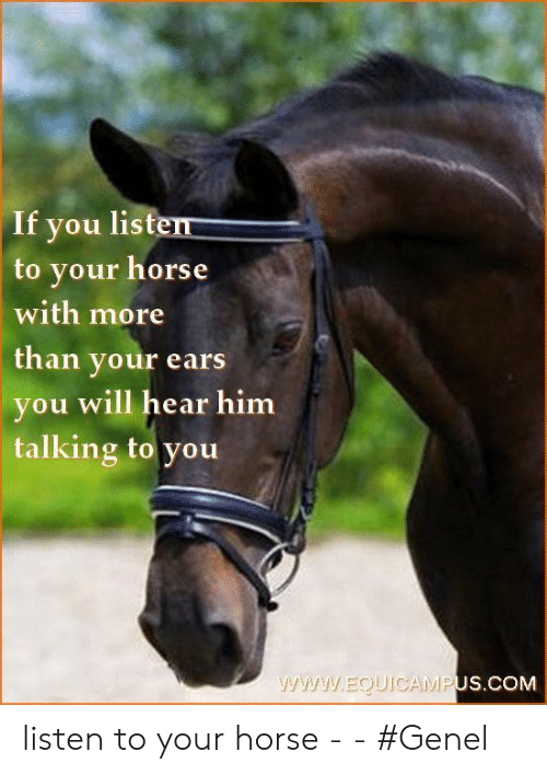 Horse, Com, and Him: If you listen  to your horse  with more  than your ears  you will hear him  talking to you  www.EQUIOCAMPUS.COM listen to your horse -   - #Genel