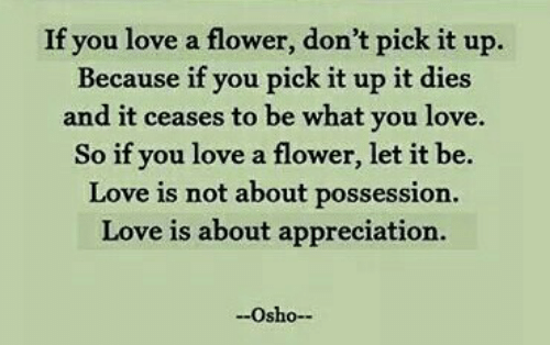 possession: If you love a flower, don't pick it up.  Because if you pick it up it dies  and it ceases to be what you love.  So if you love a flower, let it be.  Love is not about possession.  Love is about appreciation.  Osho-
