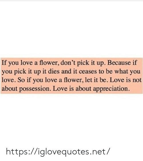 possession: If you love a flower, don't pick it up. Because if  you pick it up it dies and it ceases to be what you  love. So if you love a flower, let it be. Love is not  about possession. Love is about appreciation. https://iglovequotes.net/