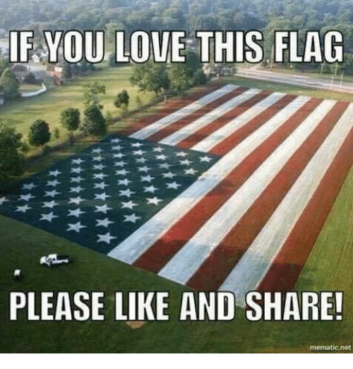 Love, Memes, and 🤖: IF  YOU LOVE THIS FLAG  PLEASE LIKE AND SHARE!