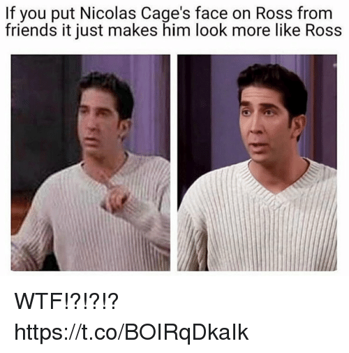 Friends, Funny, and Wtf: If you put Nicolas Cage's face on Ross from  friends it just makes him look more like Ross WTF!?!?!? https://t.co/BOIRqDkaIk