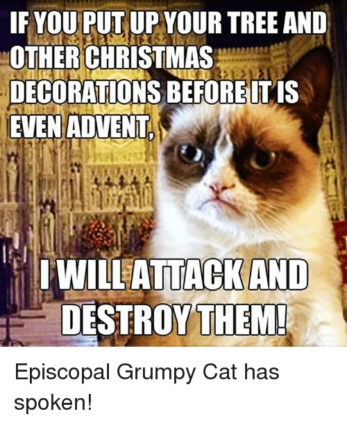 25 Best Memes About Grumpy Cats Grumpy Cats Memes